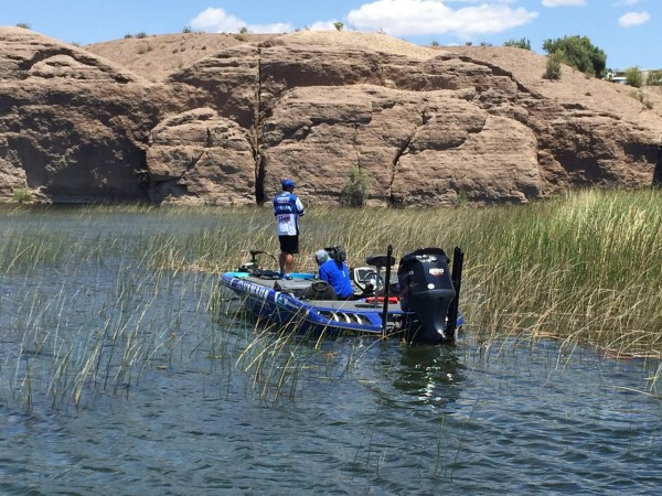 Takahiro Omori just dragged bass number four in the boat from deep in the tules. It was a 3-pounder. That gives him about 11 1/2 pounds. He's pitching a Reaction Innovations Sweet Beaver and punching any kind of shaded mats he can find.